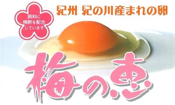 三和食品オリジナル玉子 梅の恵